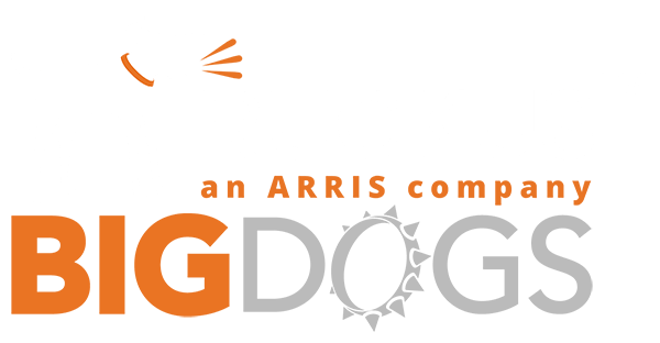 ruckus bigdog logo - Wireless Networking